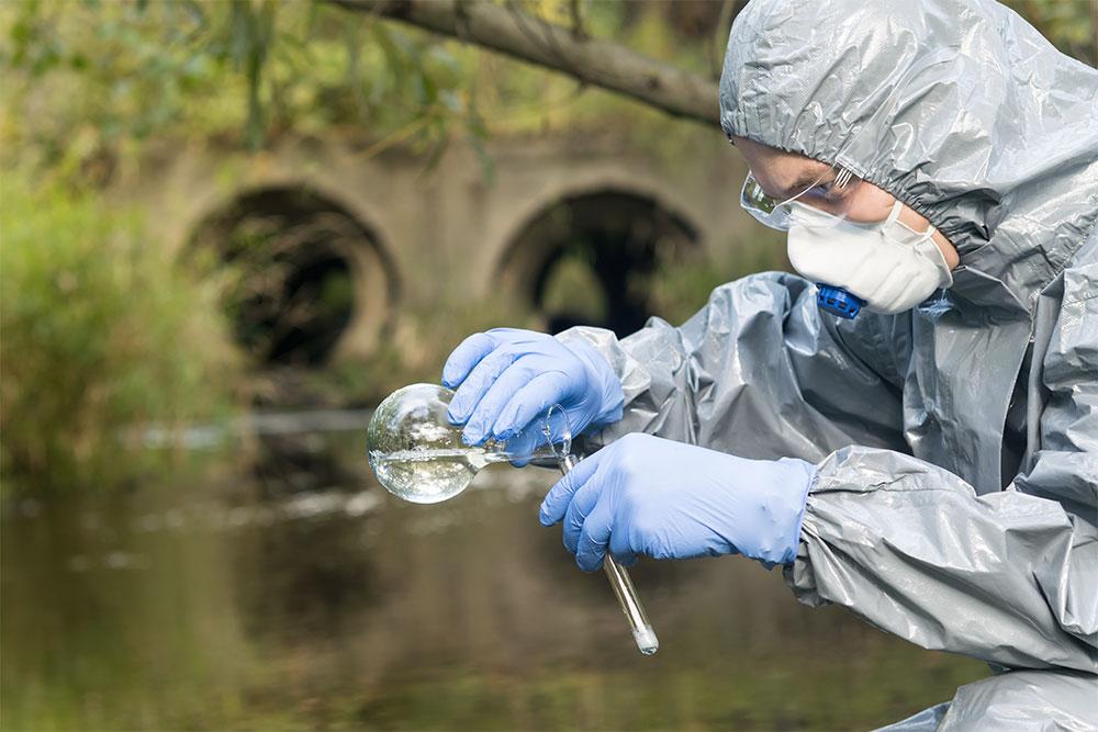 организация государственной экологической экспертизы